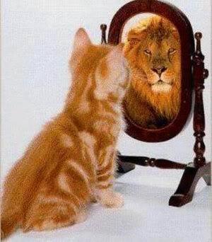 macka-u-ogledalu