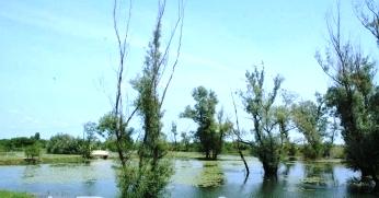bijeljina-pet-jezera